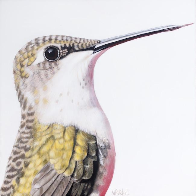 Ava Hummingbird Original Painting