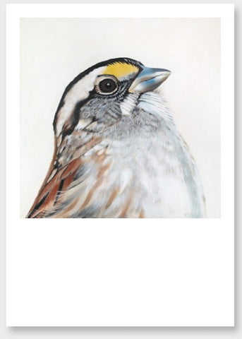 sparrow art print, bird portrait, bird art