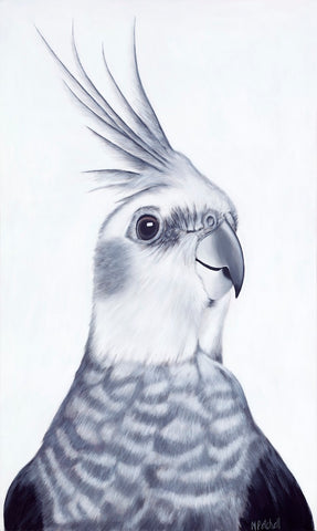 cockatiel art print, parrot portrait, new zealand bird artist