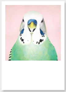 budgie art print , green budgie , pink background, budgie close up portrait