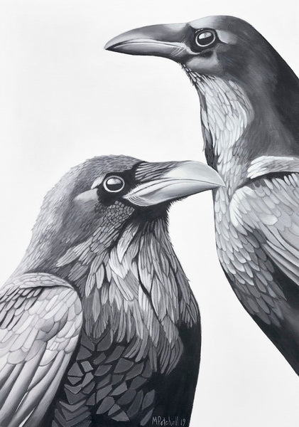 The Crows  Bird Art Print