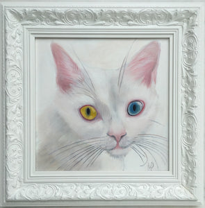original painted portrait  of a white cat with different eye colours