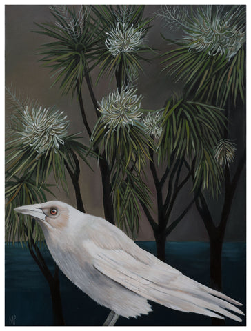 """Keith"" White Magpie by Cabbage Trees"