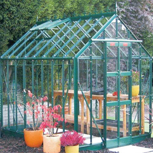 Elite Thyme 6' Wide Greenhouse