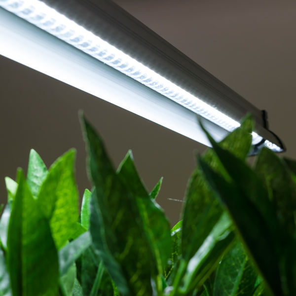 GS LED Grow Light