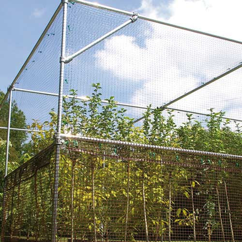 Heavy Duty Fruit Cage