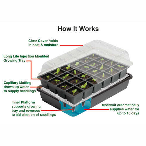 Self Watering Seed Success Kit
