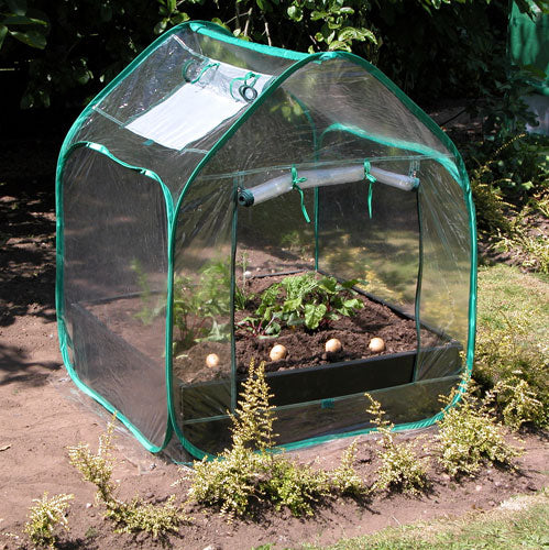 Large Raised Bed With Pop Up Mini Greenhouse