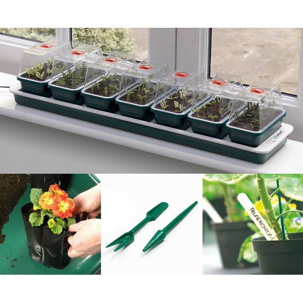 Special Offer Propagation Starter Set