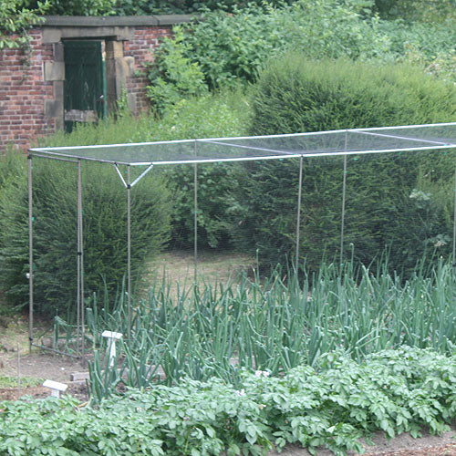 Standard 6' High Fruit Cage