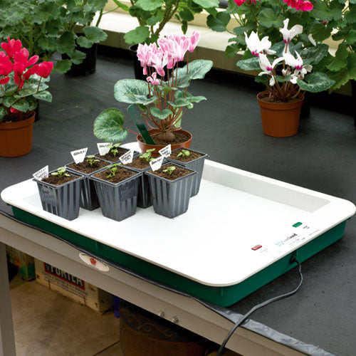 Fixed Temperature Propagator Base