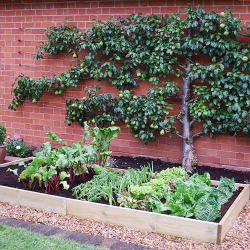 EXTENSION for Timber Grow Bed