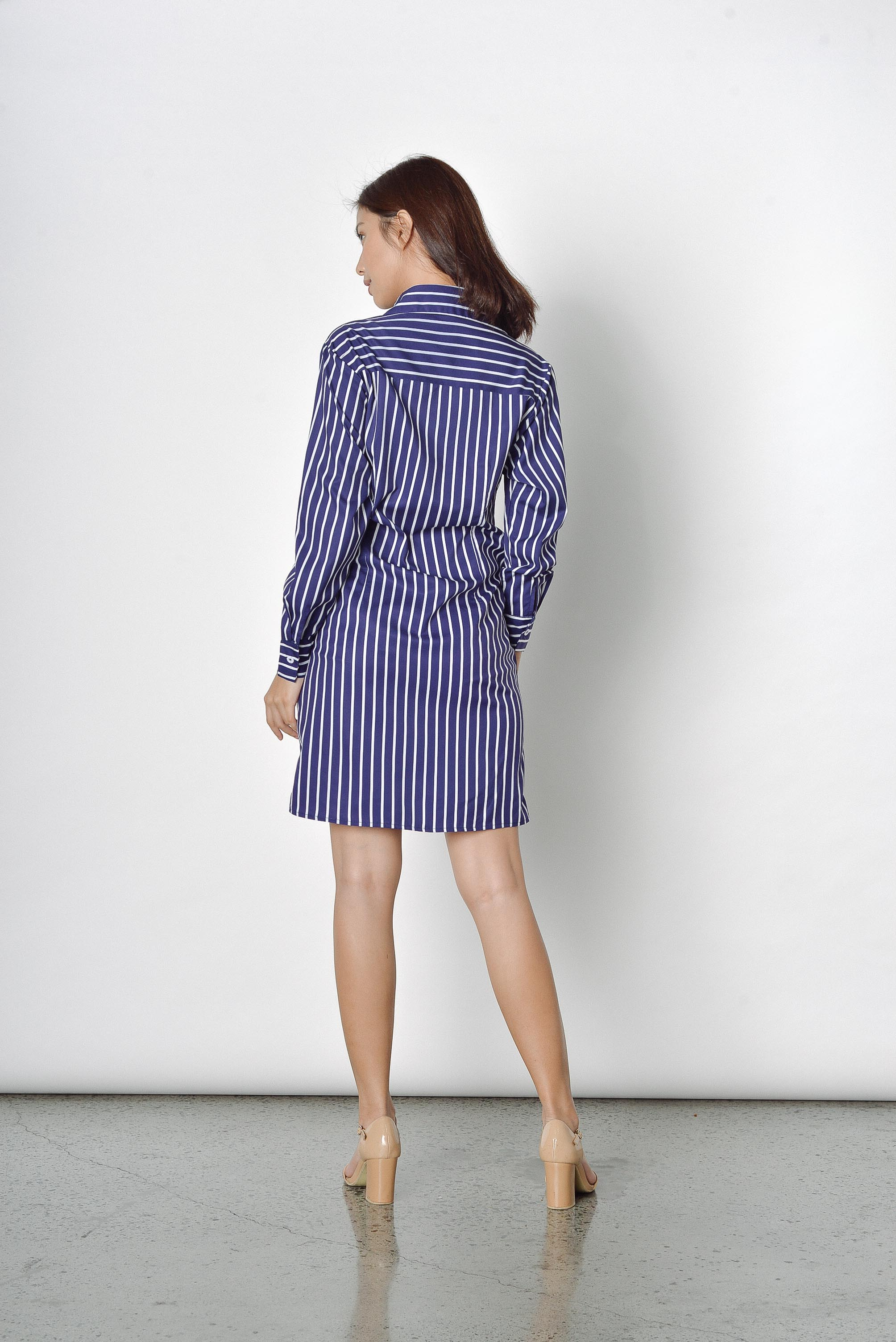 Delicia Stripes Dress in Navy