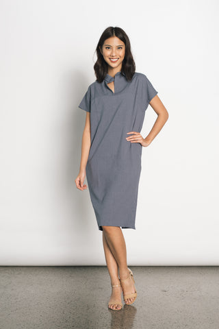 Ginevra Long Sleeve Dress in Blue