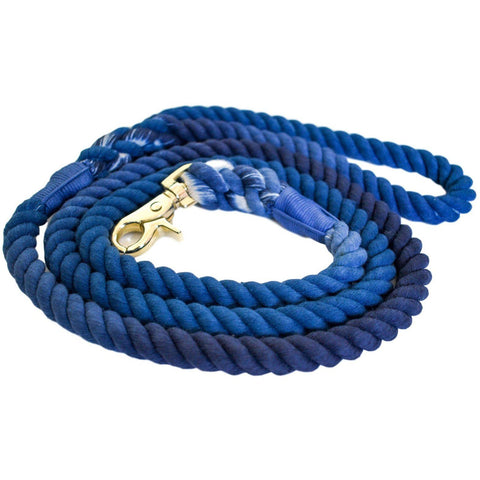 Blessed Blue - Dog Leash