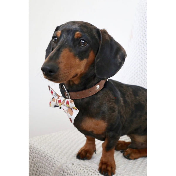 Backyard BBQ Dachshund Bow Tie - Dope Dog Co