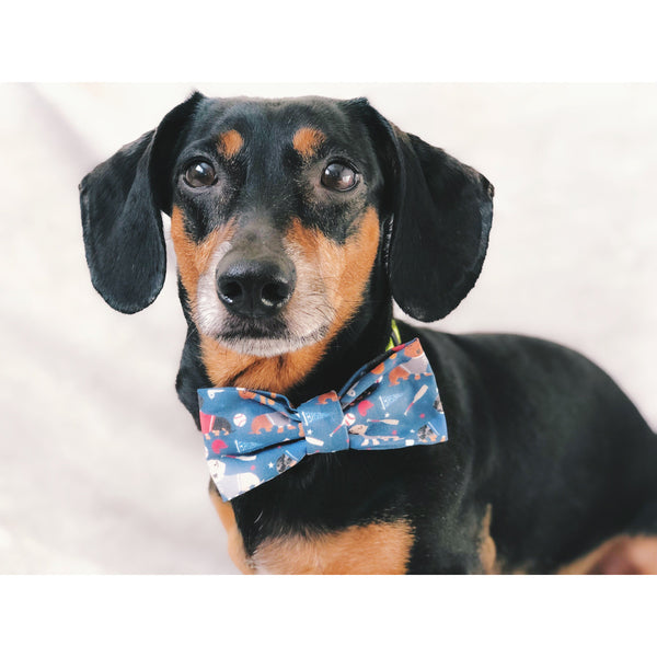 You're a Catch - Dog Bow Tie - Dope Dog Co