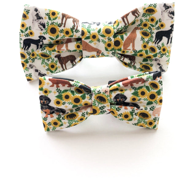 You're a Sunflower Bow Tie - Dope Dog Co