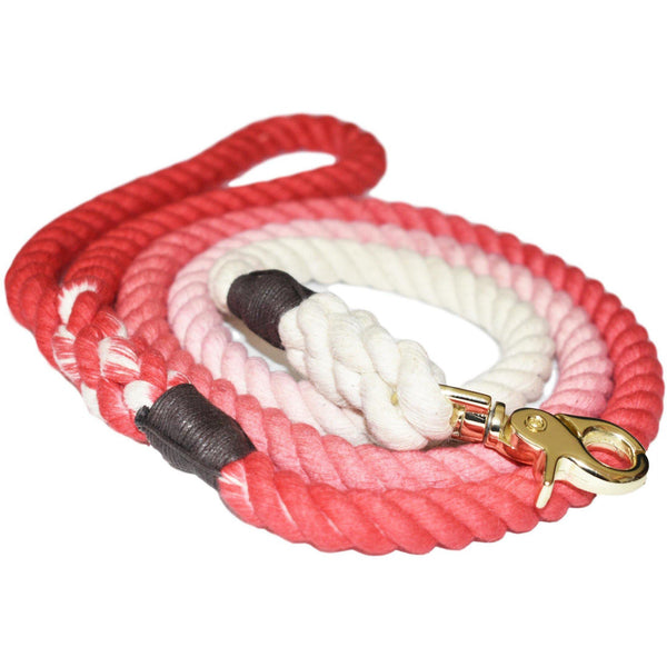 Sweet Sunrise - Dog Leash