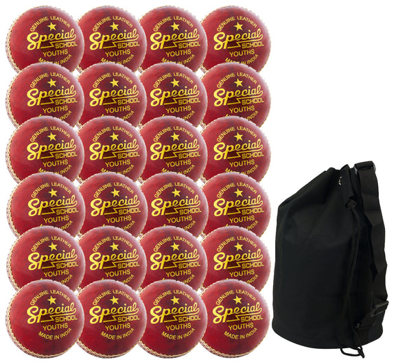 Readers Special School Cricket Ball - 24 Pack & Free Ball Bag - Sports Ball Warehouse