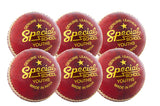 Readers Special School Cricket Ball - Six Pack - Sports Ball Warehouse