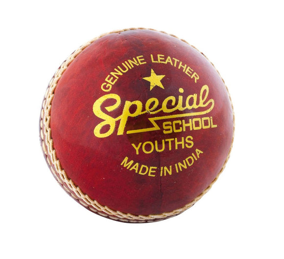 Readers Special Schools Cricket Ball - Sports Ball Warehouse