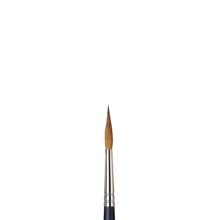 Winsor & Newton Professional Water Colour Kolinsky Sable Brush - Pointed Round #6