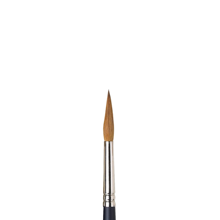Winsor & Newton Professional Water Colour Kolinsky Sable Brush - Round #8