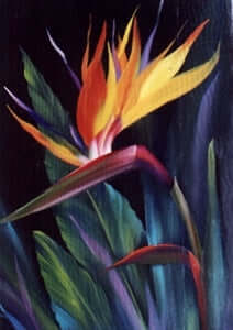 Bob Ross Floral Painting Packet - Bird of Paradise
