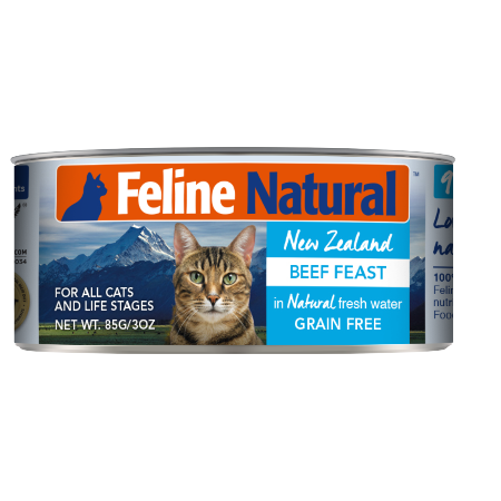 Feline Natural | Can | Beef