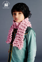 Load image into Gallery viewer, DIY Kit - Mini Scarf - Merino No. 5
