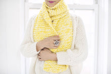 Load image into Gallery viewer, DIY Kit - Mixed Garter Stitch Scarf - Dream (Merino Worsted)