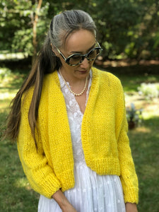 DIY Kit - Rhinebeck Cardigan - Dream (Merino Worsted)