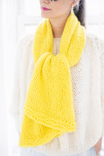 Load image into Gallery viewer, DIY Kit - Easy Scarf - Merino Worsted