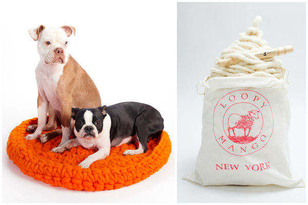 DIY Crochet Kit - No. 1 Pet Bed - Big Loop