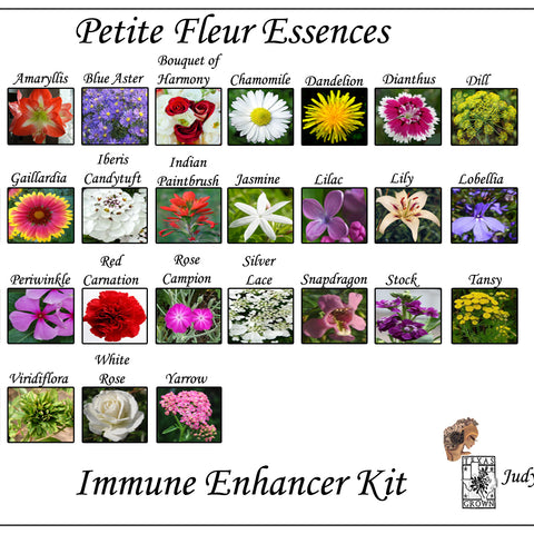 Immune Enhancers  Flower Essence Kit