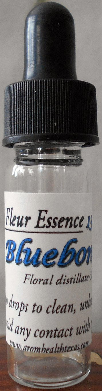 Bluebonnet Flower Essence, Texas lupine