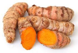 Tumeric Root, Curcuma longa, Essential oil