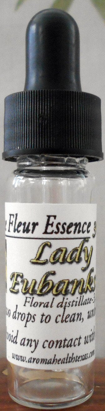 Lady Eubanksia, Antique Rose Flower Essence Rosa banksia lutescens