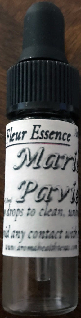 Marie Pavie Antique Rose Essence, Rosa floribunda