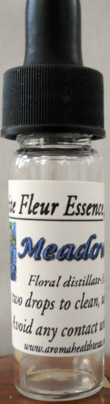 Meadow Sage (Salvia clevelandi) Flower Essence
