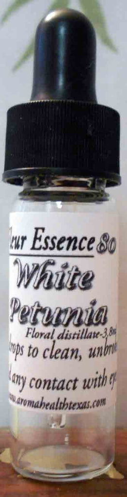 White Petunia,Solanaceae, Flower Essence