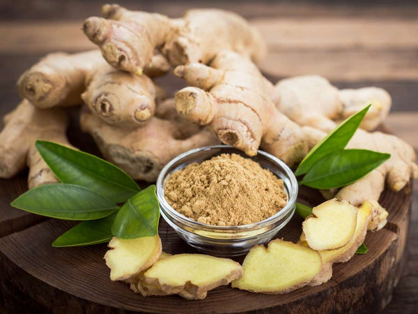 Gastroprotective Effect of Ginger Rhizome (Zingiber officinale) Extract: Role of Gallic Acid and Cinnamic Acid in H+, K+-ATPase/H. pylori Inhibition and Anti-Oxidative Mechanism