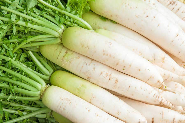 Effects of White Radish (Raphanus sativus) Enzyme Extract on Hepatotoxicity.