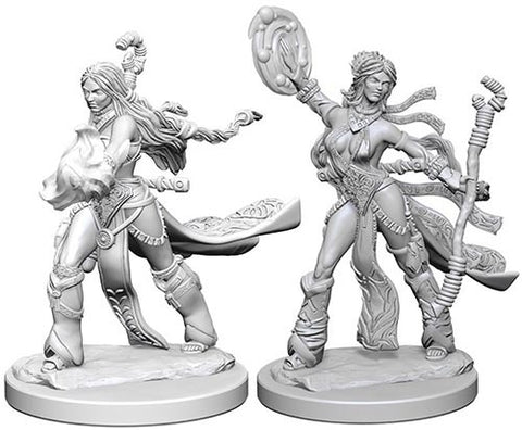 Pathfinder Deep Cuts: Unpainted Miniature Figures - Human Female Sorcerer
