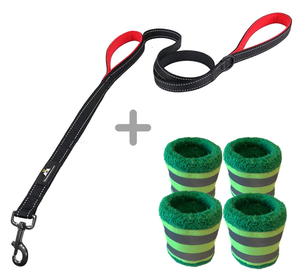 Halo Harness Leash + Vizi Bands Bundle