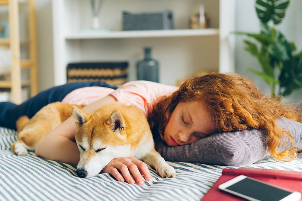 How Does Sleeping With Pets Affect Your Sleep?