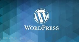 Everything you need to know about Wordpress