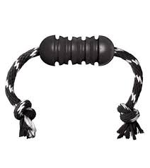 Kong Extreme Dental With Rope Dog Toy
