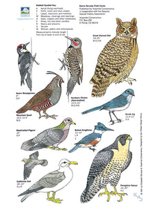 Birds of the Sierra Nevada Field Card